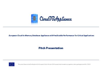 Project Pitch Presentation